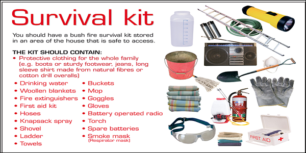 What Should Be In An Emergency Survival Kit Survival Kit