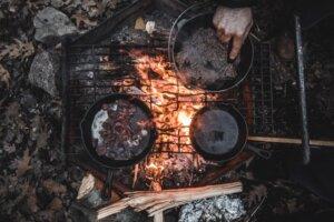 Top 15 Best Survival Books Review in 2019-Wilderness Survival Handbook
