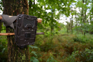 What is a Trail Camera?