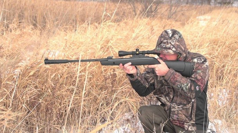 Top 6 Best Air Rifle Reviews in 2018