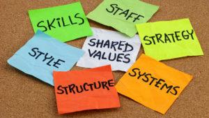 A Strategic Approach To Organizational Development