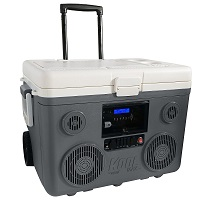 TUNES2GO KoolMAX Cooler Audio System