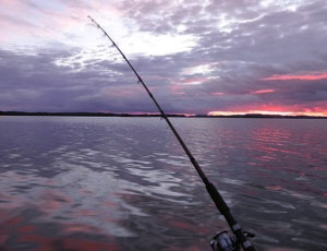 What makes fishing charters so attractive to anglers?