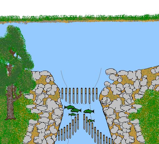 Fish Weir