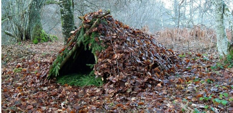 8 Things About Bushcraft You Need To Know