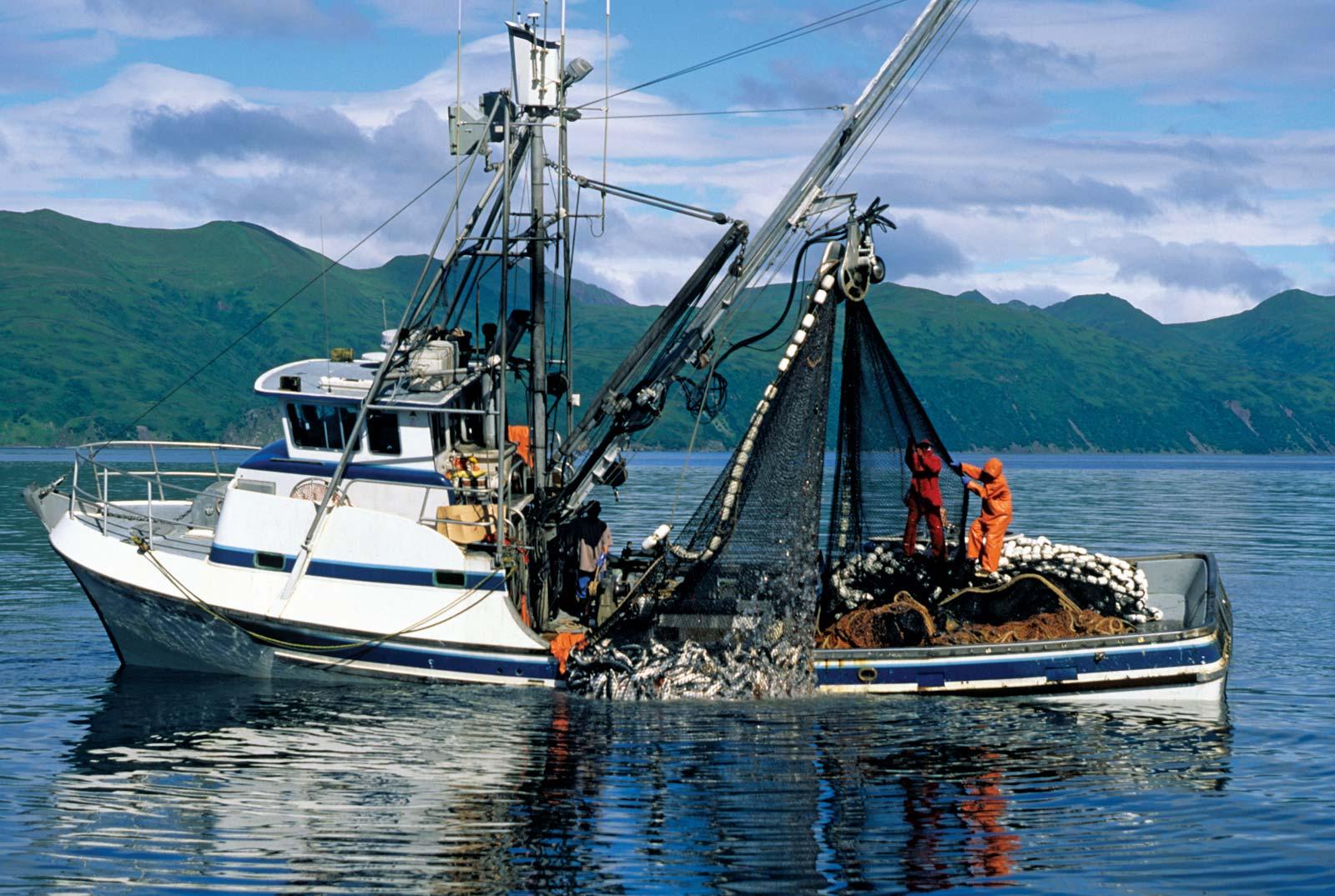 Fishing Boat Buying Guide