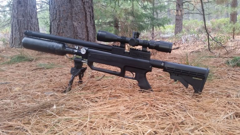 10 Best Air Rifle Reviews -Pellet Guns For Hunting (Update Buyer Guide 2021)