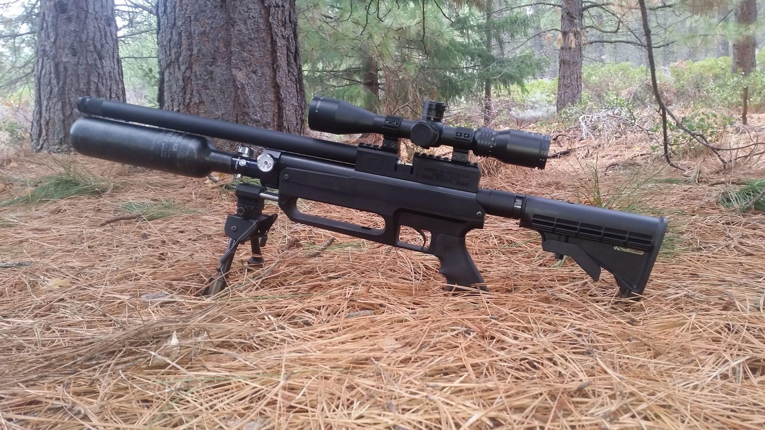 Best Pellet Guns For Hunting