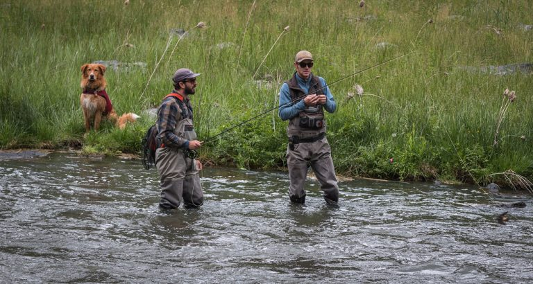 5 Best Fishing Waders For The Money (Reviews – Buyer Guide 2021)