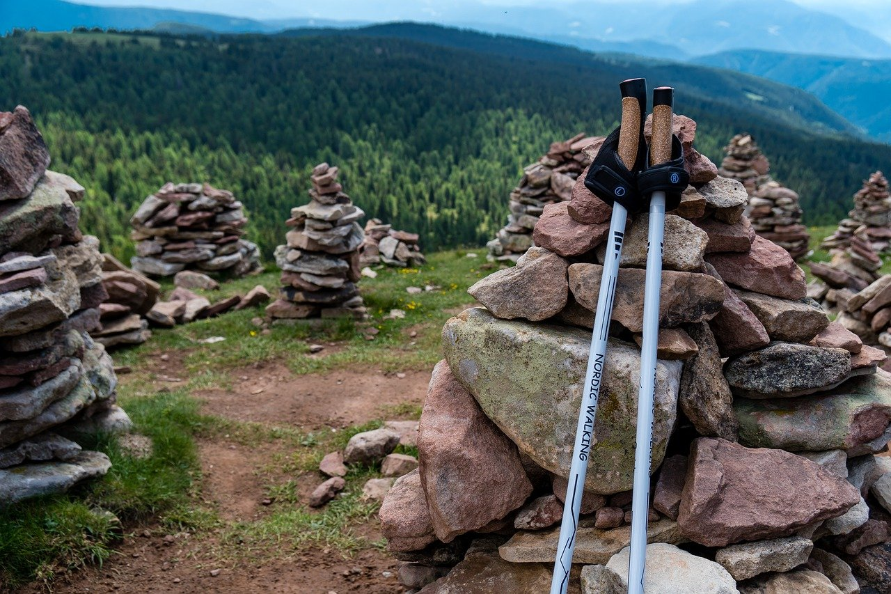 Best Trekking Poles Reviews